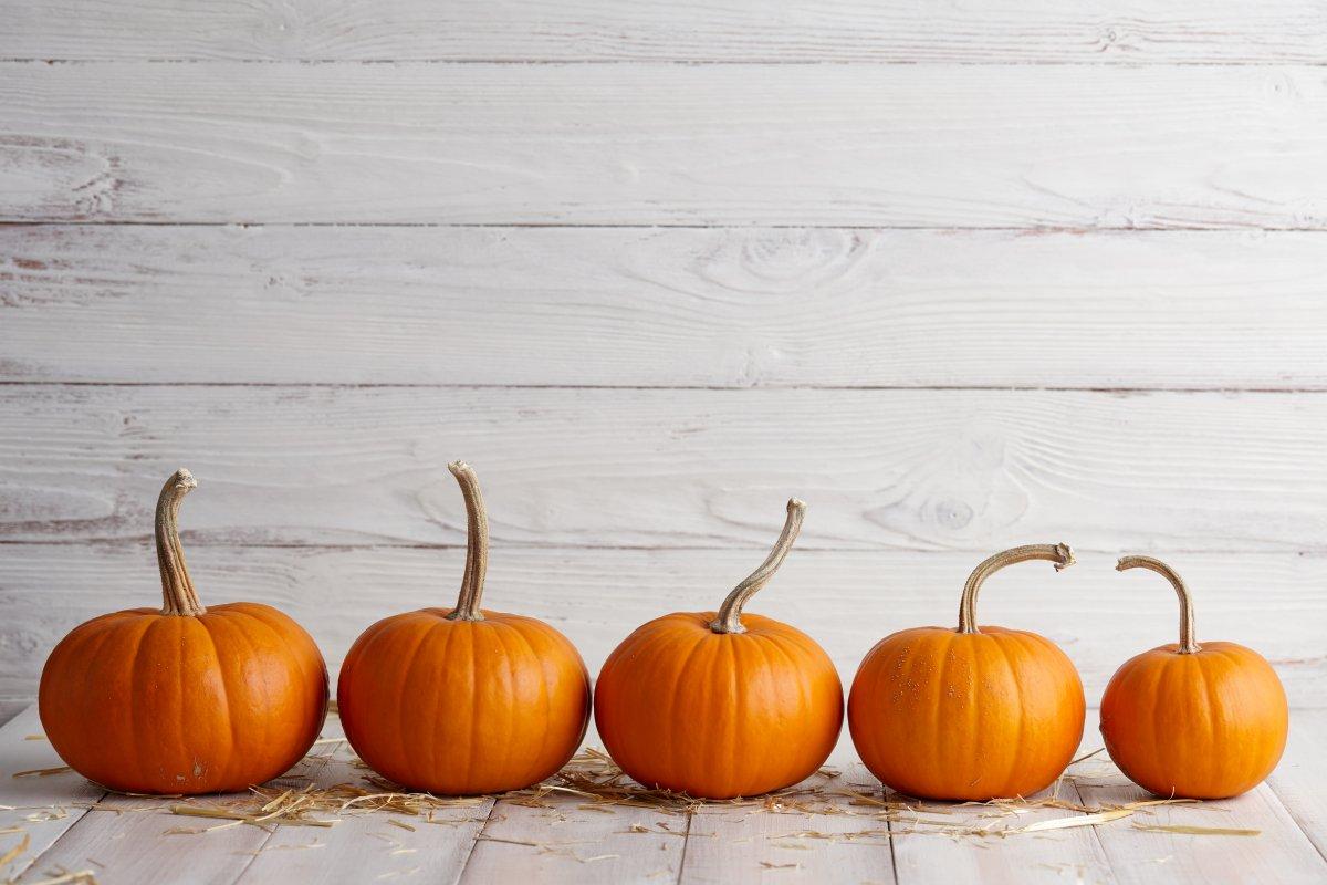 Henderson NV Halloween