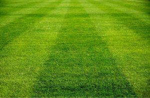 Henderon ball fields grass water